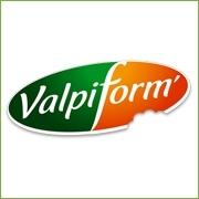 b - VALPIFORM